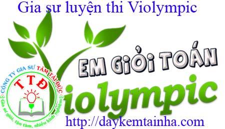 gia-su-luyen-thi-violympic